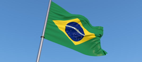 整形大国でもあるブラジルの国旗