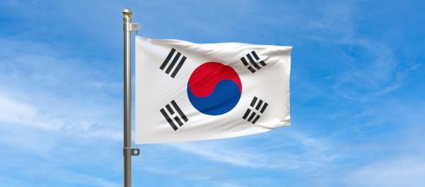 整形大国の一つである韓国の国旗
